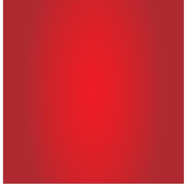 SLID-Bonne-ann-e-04